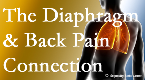 Hollstrom & Associates Inc recognizes the relationship of the diaphragm to the body and spine and back pain.