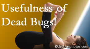Hollstrom & Associates Inc finds dead bugs quite useful in the healing process of Largo back pain for many chiropractic patients.