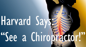 Largo chiropractic for back pain relief urged by Harvard
