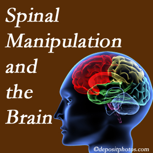 Hollstrom & Associates Inc [shares research on the benefits of spinal manipulation for brain function.