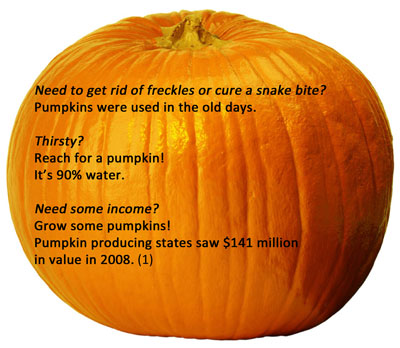pumpkin facts